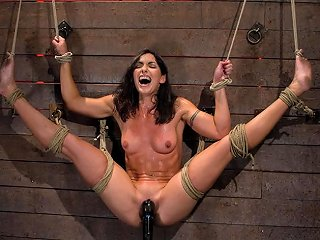 Gymnast Fitness Model Has Her Flexibility Put To The Test Made To Cum Until She Is A Sweaty Pig Hogtied Txxx Com