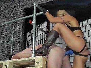 Femdom Mistress Z 2