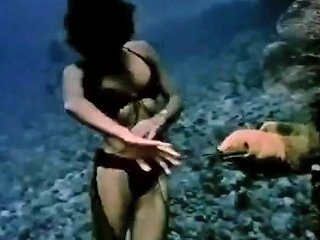 Vintage Soft Erotica Underwater Striptease Free Porn